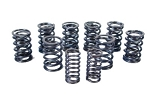 Set of Dual Valve Springs MGA MGB